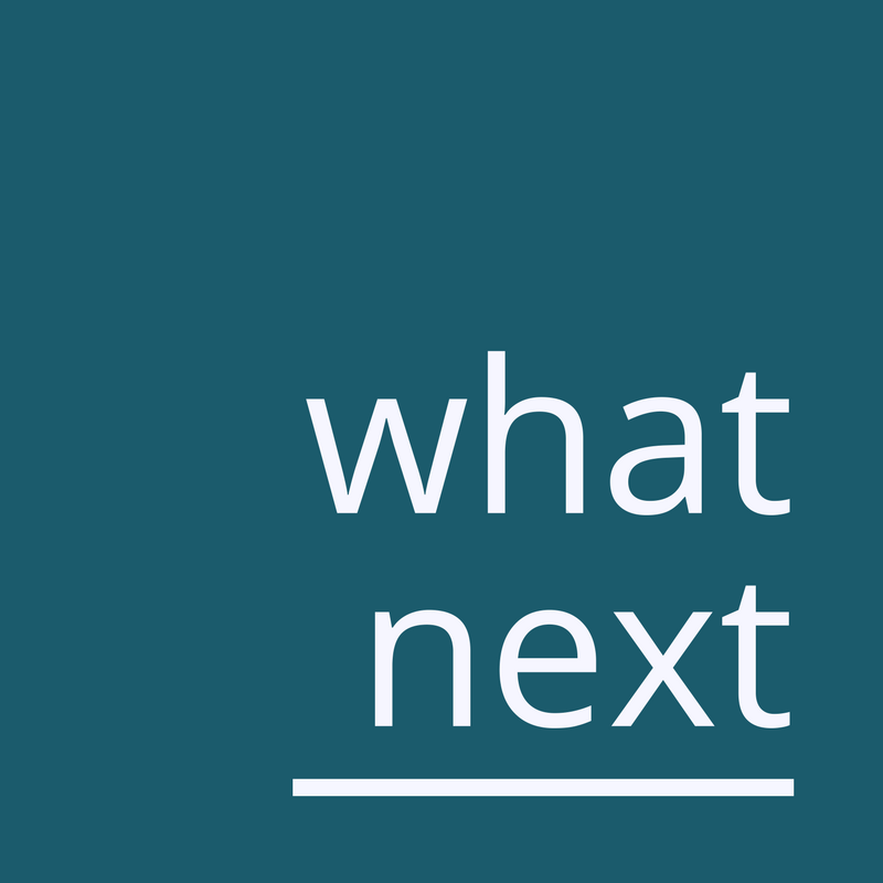 What Next Strategy & Planning Logo