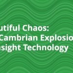Beautiful Chaos: The Cambrian Explosion of Insight Technology